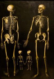 Job_bible_Timeline_skeleton