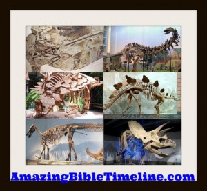 Why_doesn't_the_Bible_mention_the_Dinosaurs