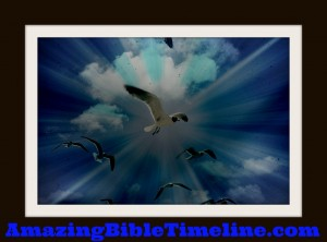 Does_the_Bible_Say_Birds_Will_Fall_From_The_Sky